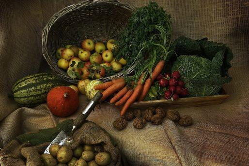 Den ganzen Beitrag zu Workshop Foodwaste lesen