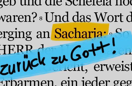 Den ganzen Beitrag zu Sacharja – ein kleiner Prophet mit großen Visionen lesen