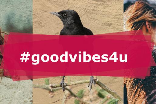 Den ganzen Beitrag zu #goodvibes4u lesen